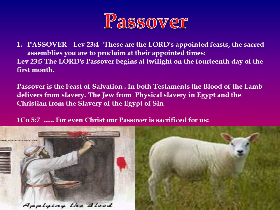 Passover PASSOVER Lev 23:4 These are the LORD s appointed feasts, the sacred assemblies you are to proclaim at their appointed times: