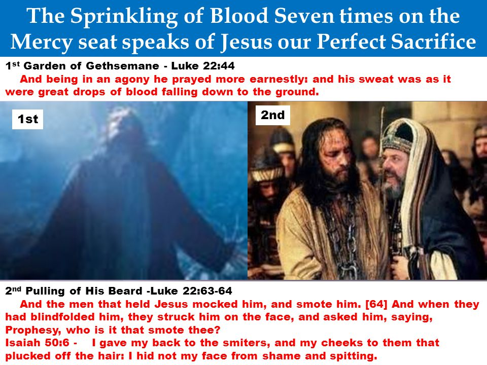 The Sprinkling of Blood Seven times on the Mercy seat speaks of Jesus our Perfect Sacrifice