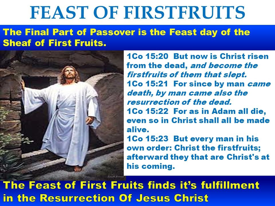 FEAST OF FIRSTFRUITS The Final Part of Passover is the Feast day of the Sheaf of First Fruits.