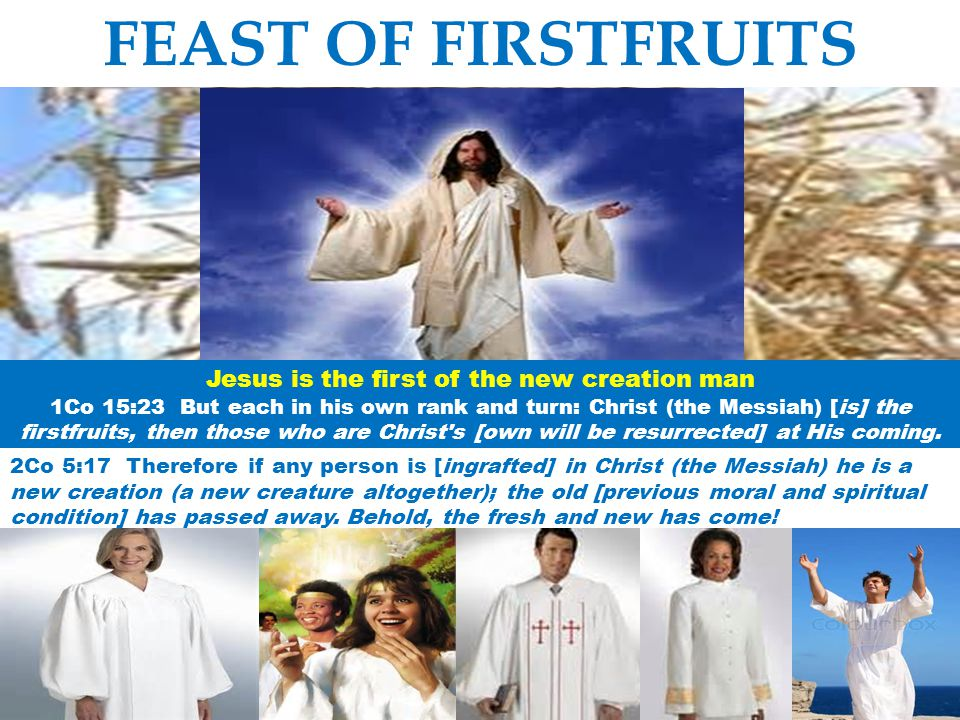 Jesus is the first of the new creation man
