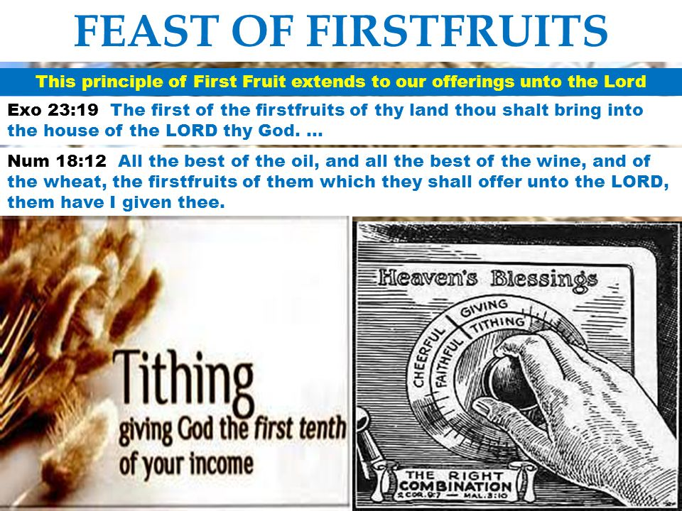 This principle of First Fruit extends to our offerings unto the Lord