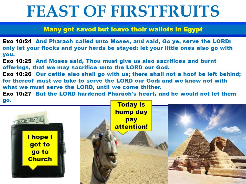 Many get saved but leave their wallets in Egypt