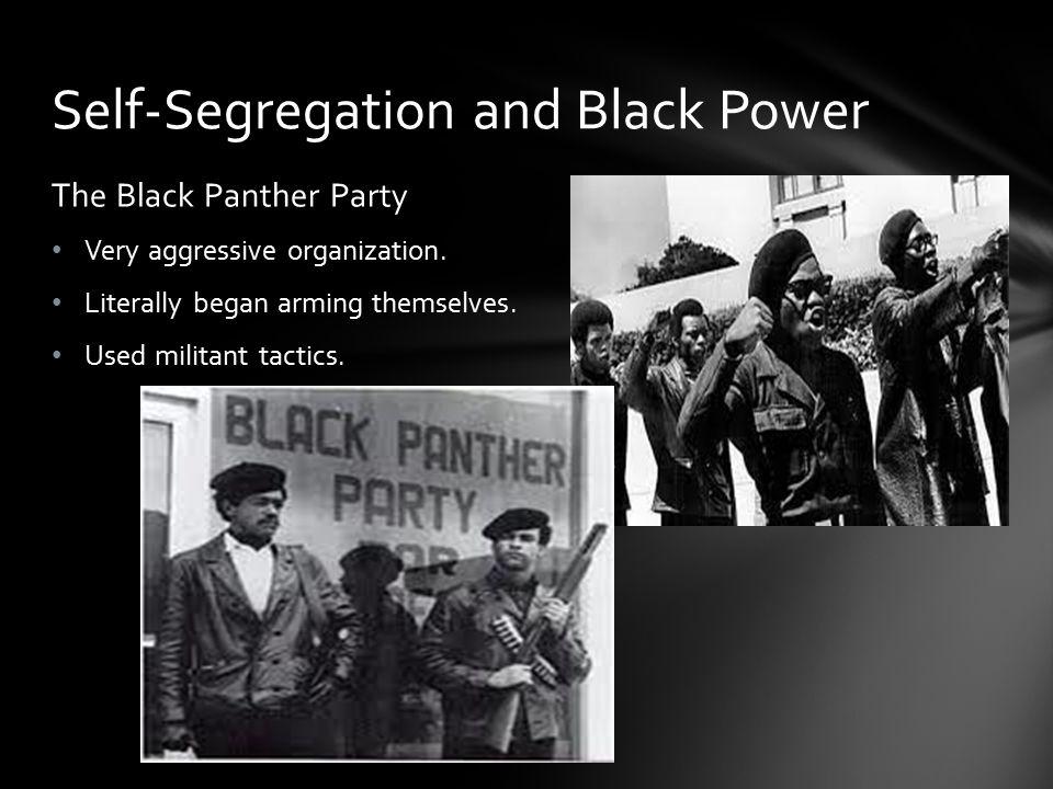 Self-Segregation and Black Power