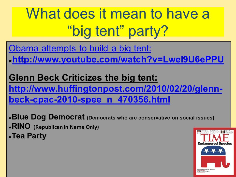 What does it mean to have a big tent party