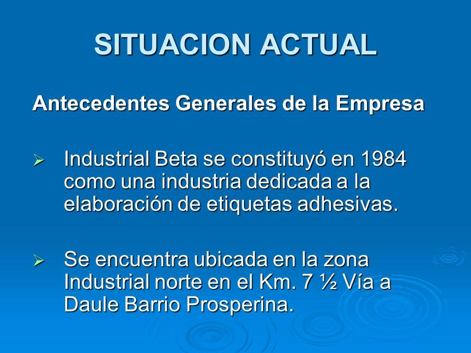 SITUACION ACTUAL Antecedentes Generales de la Empresa