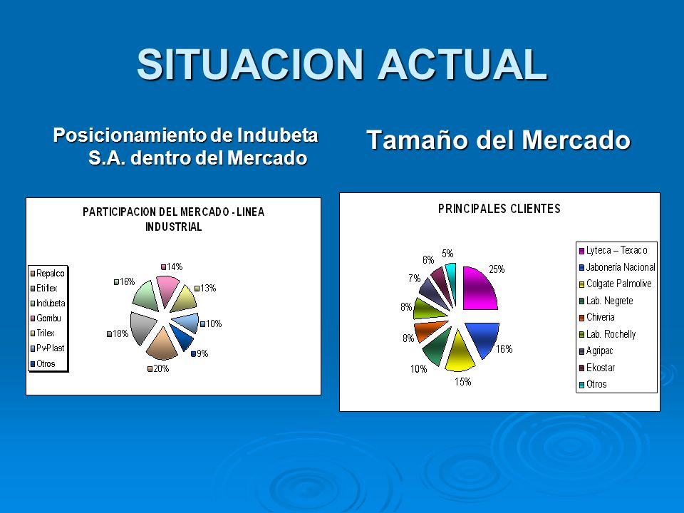 Posicionamiento de Indubeta S.A. dentro del Mercado