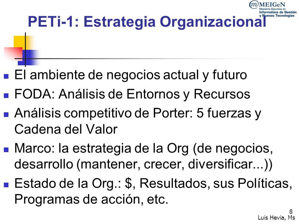 PETi-1: Estrategia Organizacional