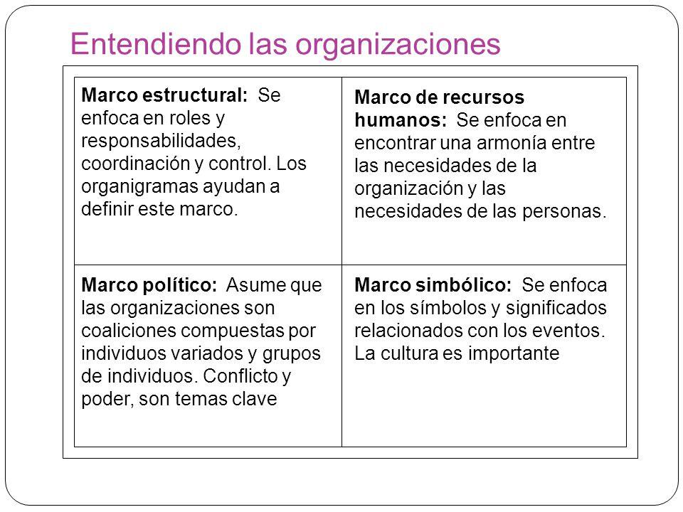 Entendiendo las organizaciones