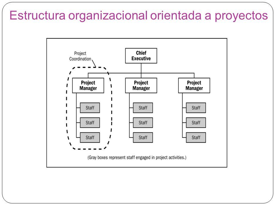Estructura organizacional orientada a proyectos