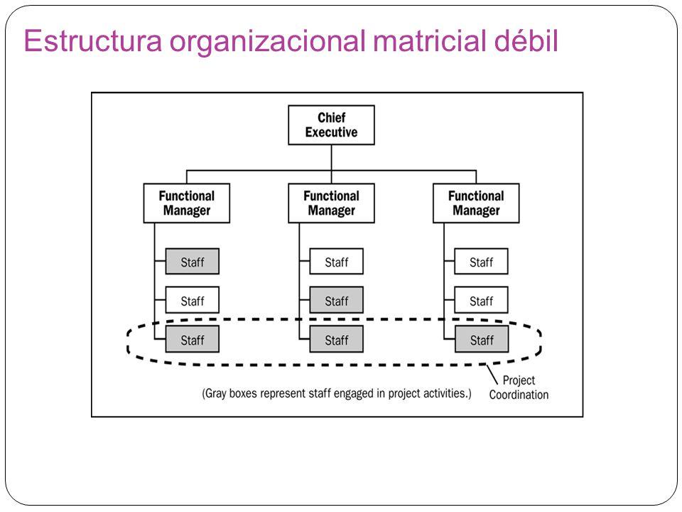 Estructura organizacional matricial débil