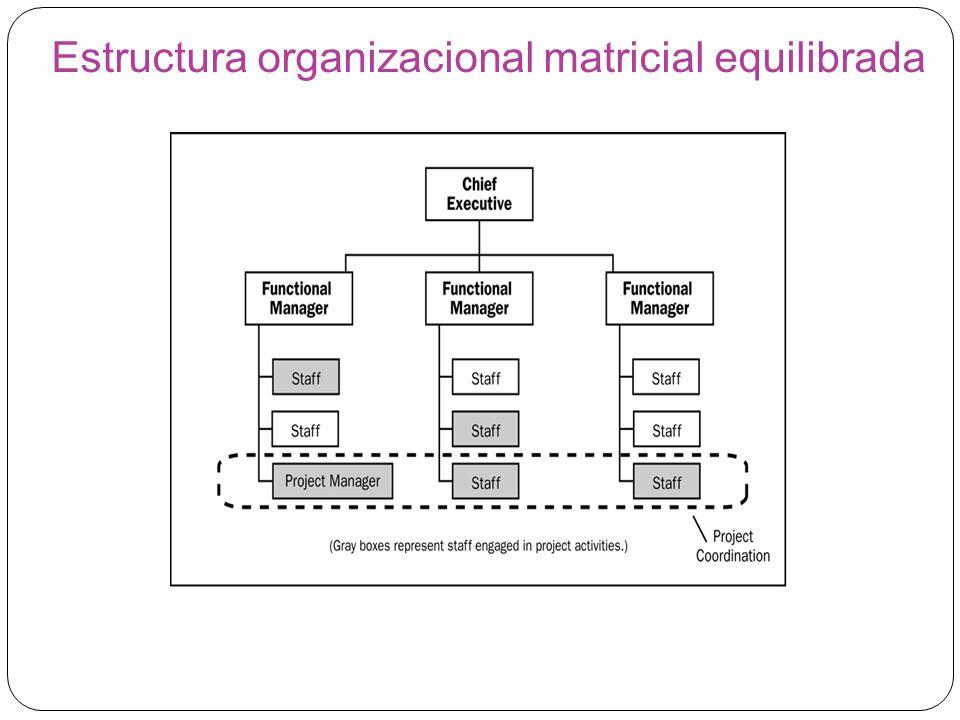 Estructura organizacional matricial equilibrada