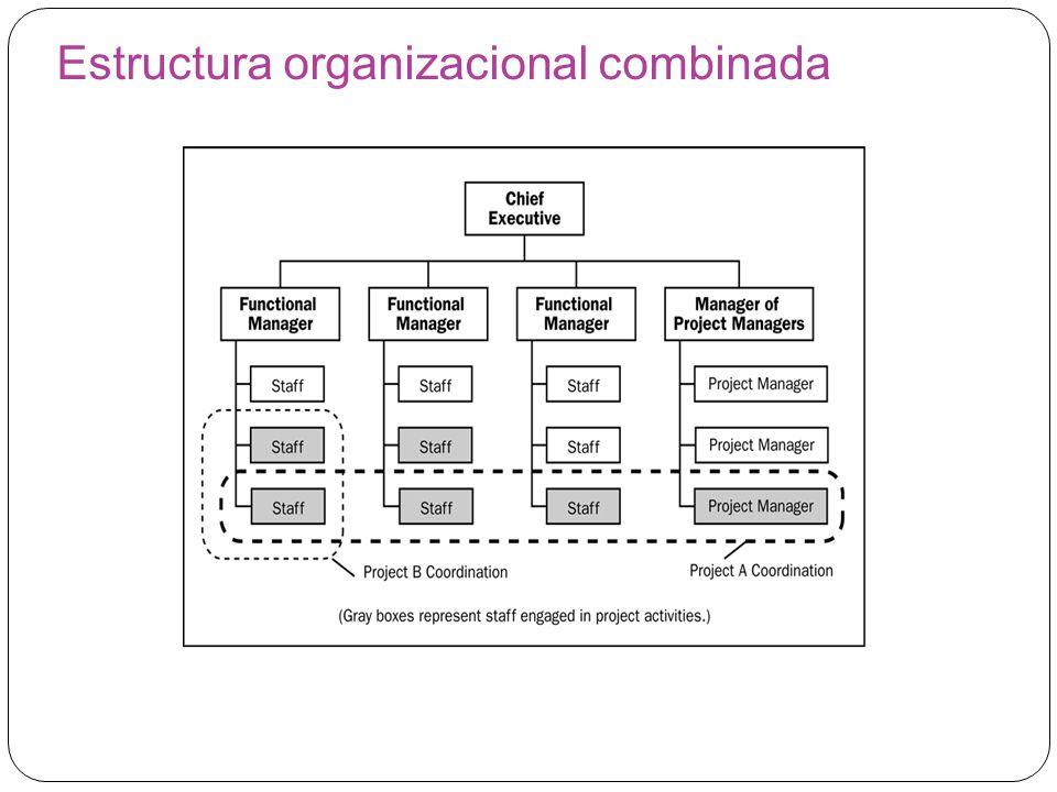 Estructura organizacional combinada