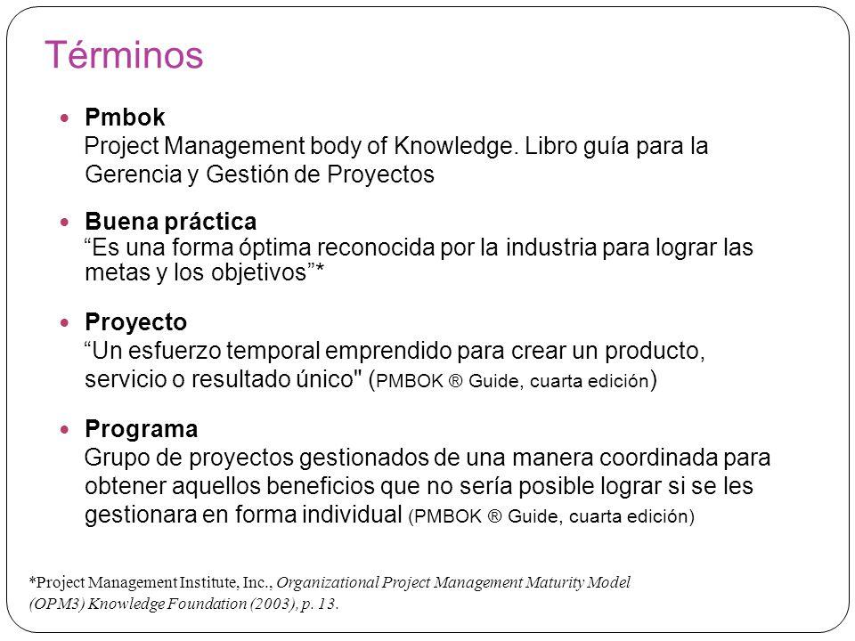 Términos Pmbok. Project Management body of Knowledge. Libro guía para la Gerencia y Gestión de Proyectos.