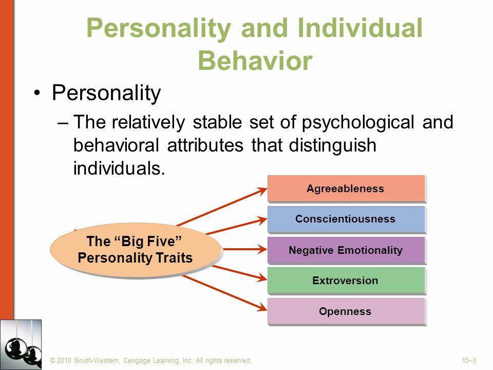 Personality and Individual Behavior