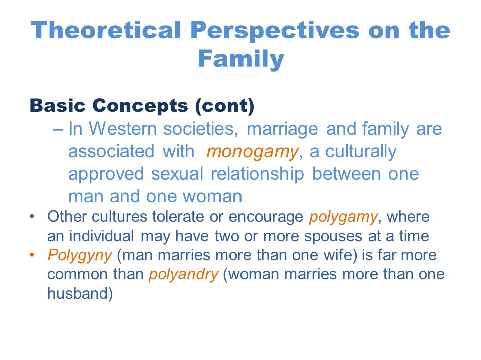 Theoretical Perspectives on the Family