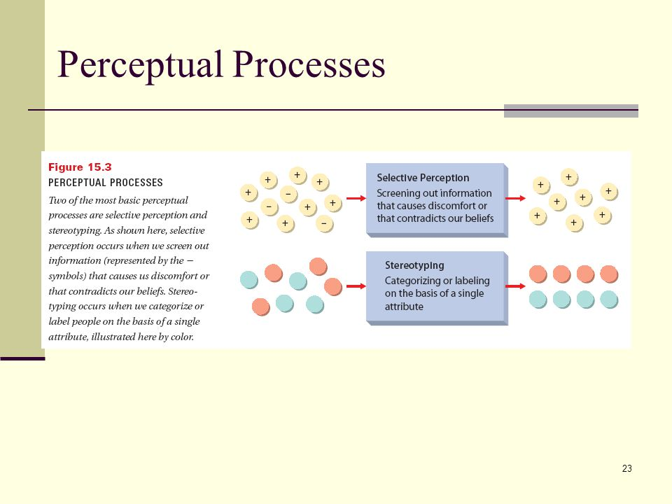Perceptual Processes