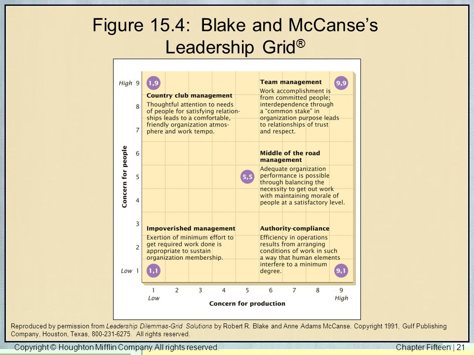 Figure 15.4: Blake and McCanse's Leadership Grid®