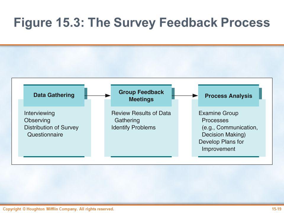 Figure 15.3: The Survey Feedback Process