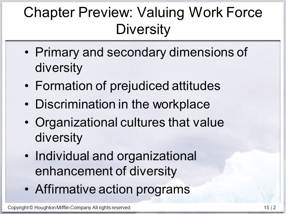 Chapter Preview: Valuing Work Force Diversity