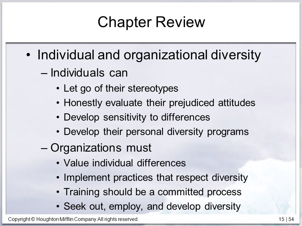 Chapter Review Individual and organizational diversity Individuals can