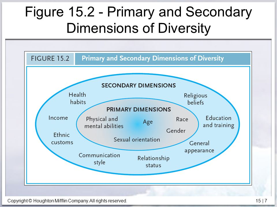 Figure 15.2 - Primary and Secondary Dimensions of Diversity