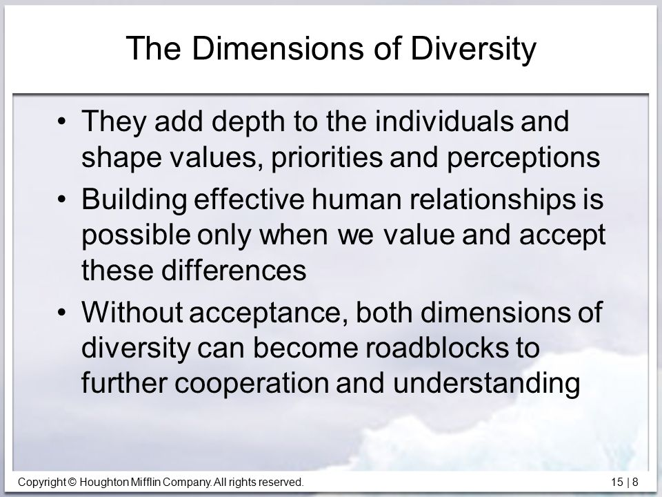 The Dimensions of Diversity