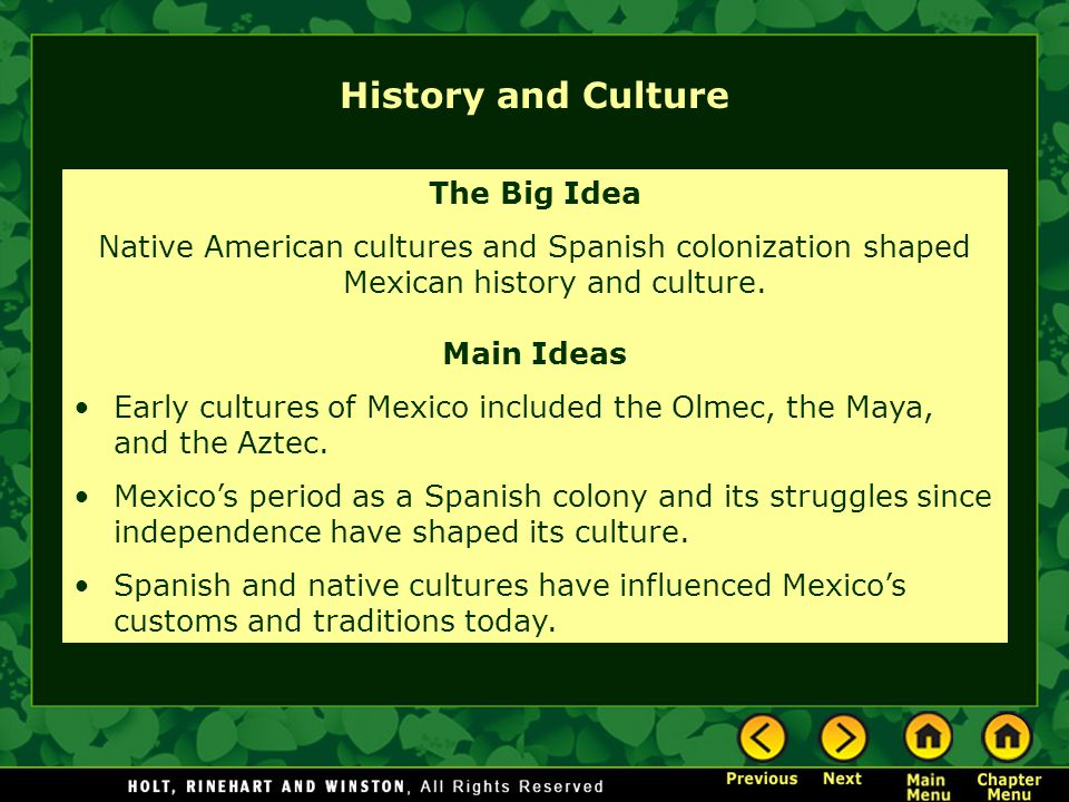 History and Culture The Big Idea