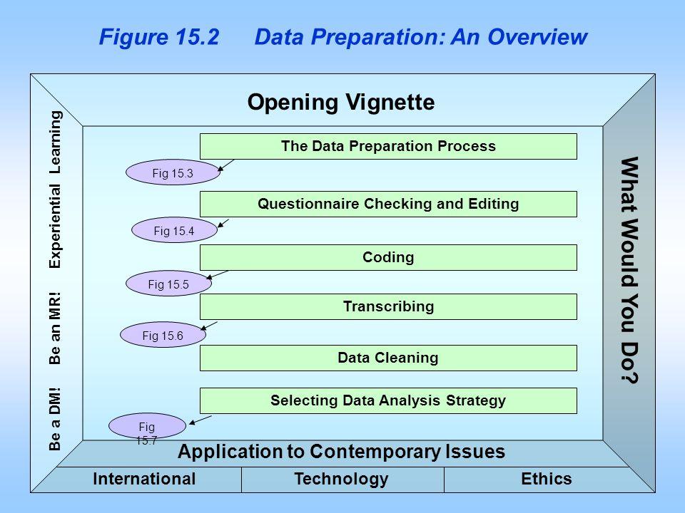 Figure 15.2 Data Preparation: An Overview