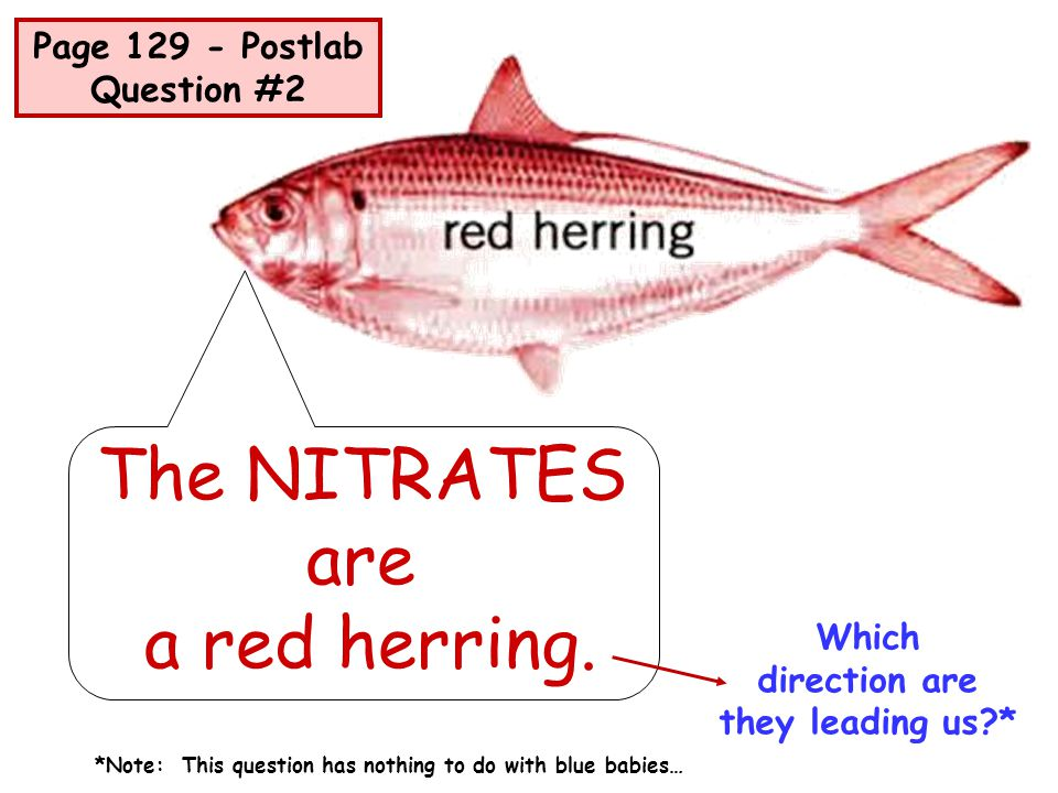 The NITRATES are a red herring. Page 129 - Postlab Question #2 Which
