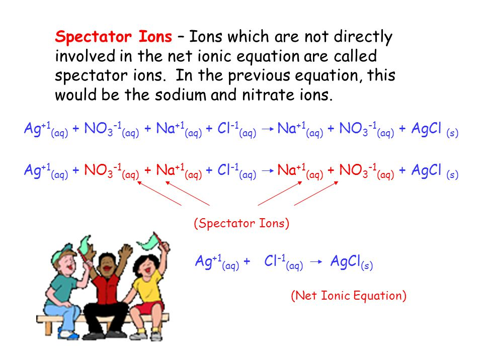 Spectator Ions – Ions which are not directly involved in the net ionic equation are called spectator ions. In the previous equation, this would be the sodium and nitrate ions.