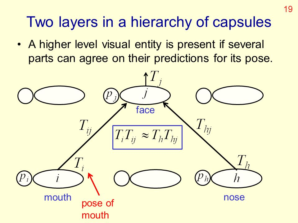 Two layers in a hierarchy of capsules