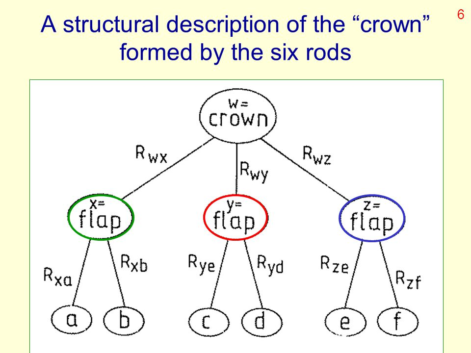 A structural description of the crown formed by the six rods