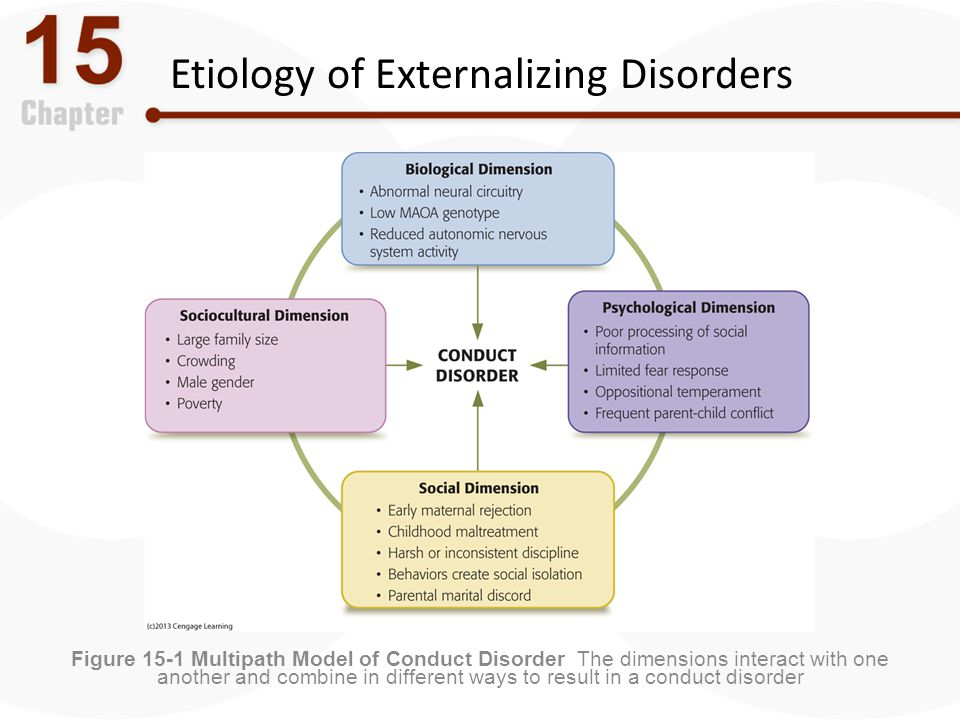Etiology of Externalizing Disorders