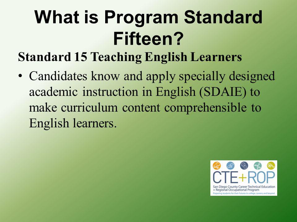 What is Program Standard Fifteen