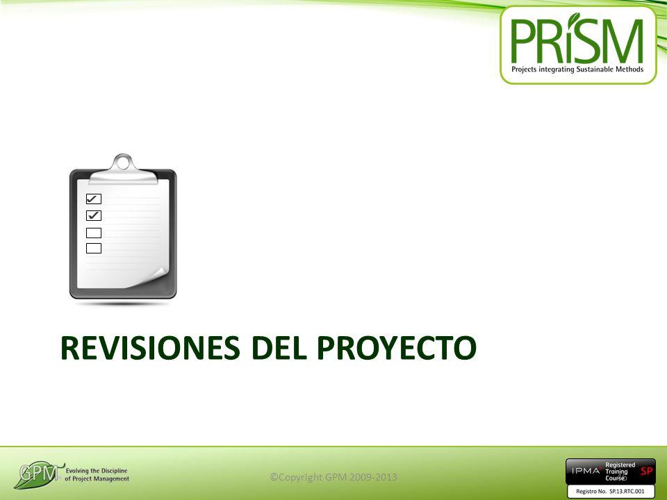 Revisiones del Proyecto