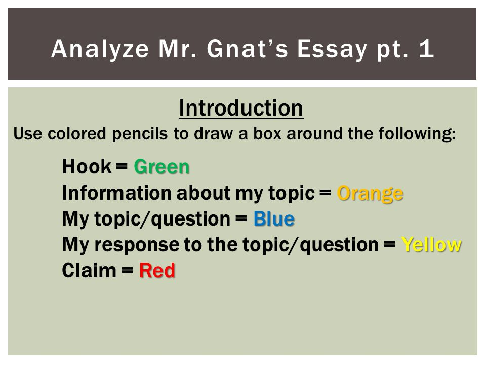 Analyze Mr. Gnat's Essay pt. 1