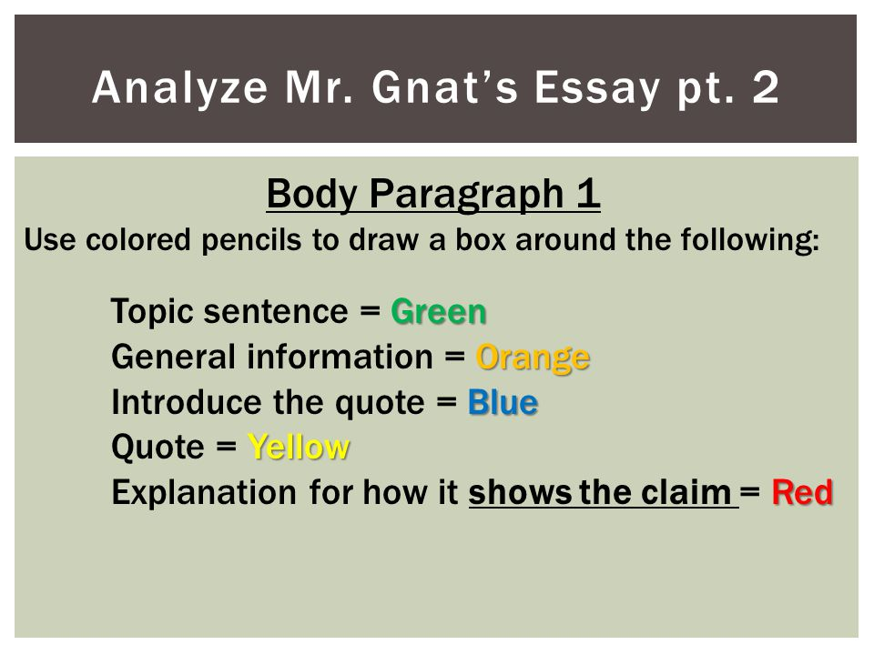 Analyze Mr. Gnat's Essay pt. 2