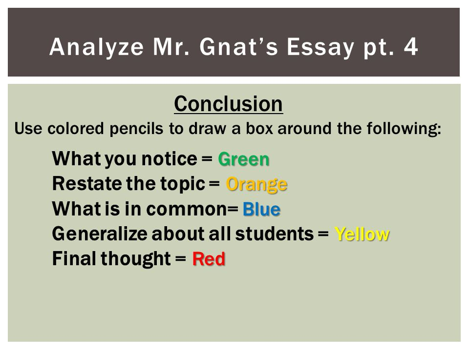 Analyze Mr. Gnat's Essay pt. 4