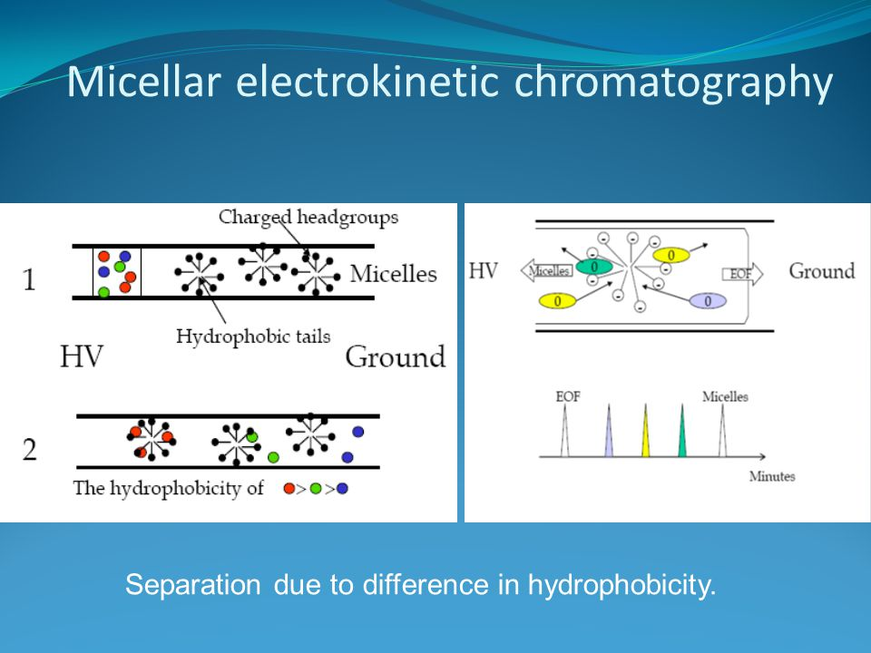 Micellar electrokinetic chromatography