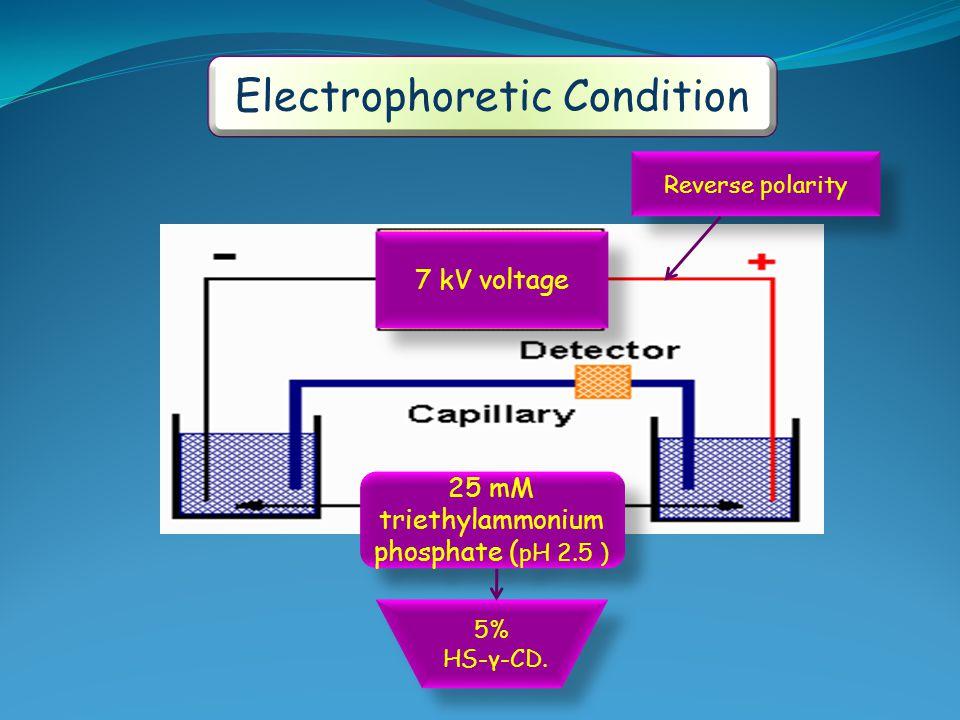 Electrophoretic Condition