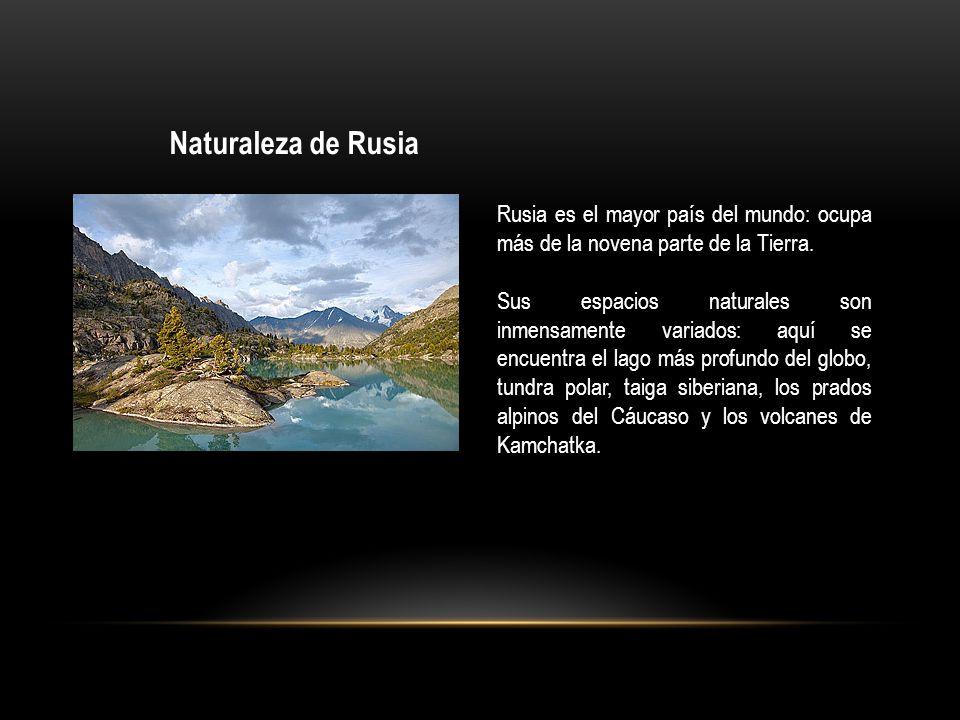 Naturaleza de Rusia Rusia es el mayor país del mundo: ocupa más de la novena parte de la Tierra.
