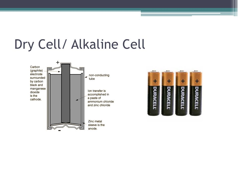 Dry Cell/ Alkaline Cell