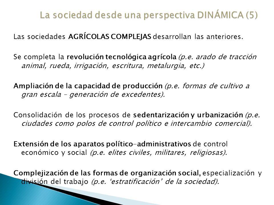 La sociedad desde una perspectiva DINÁMICA (5)