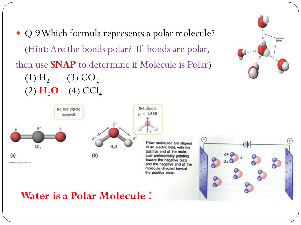 Water is a Polar Molecule !