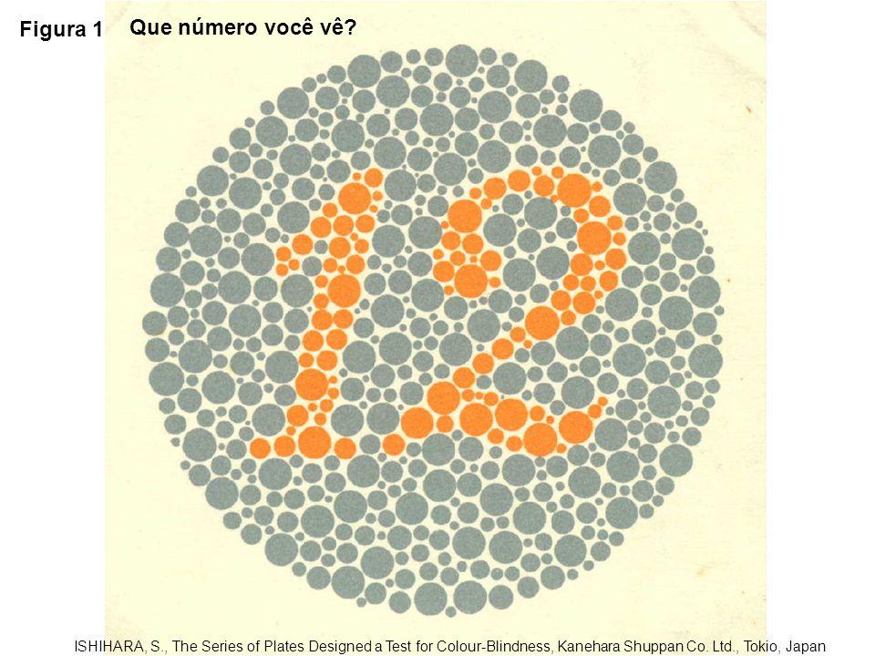 Figura 1 Que número você vê