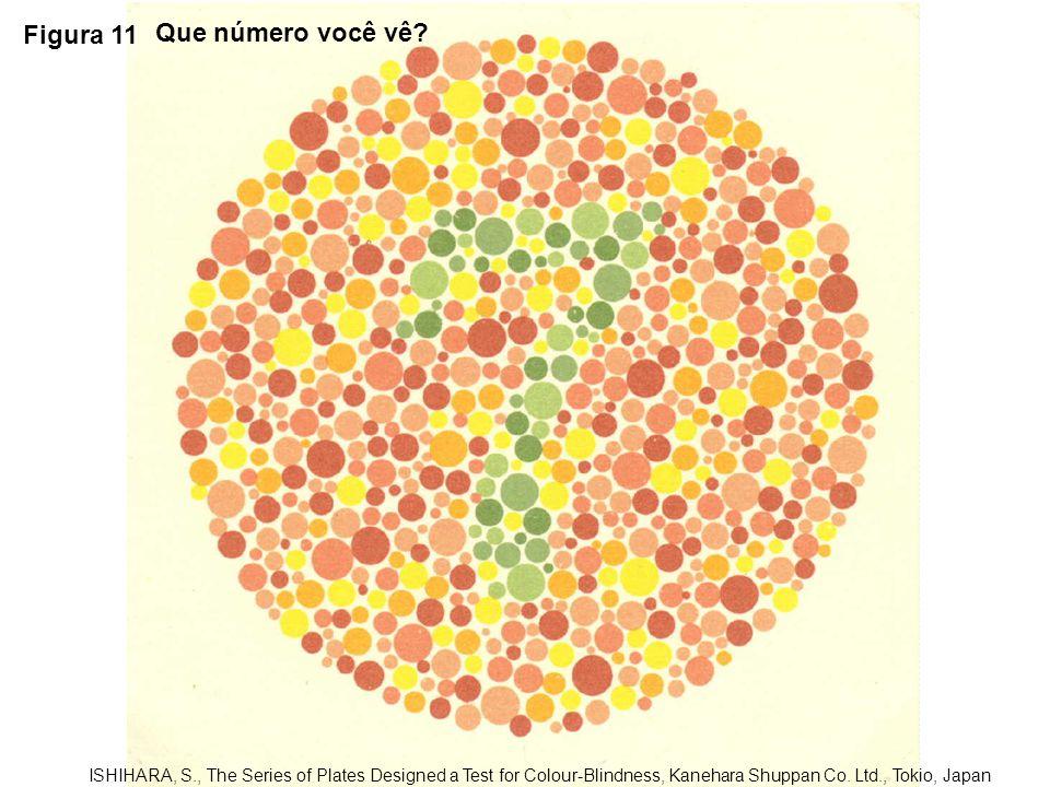 Figura 11 Que número você vê