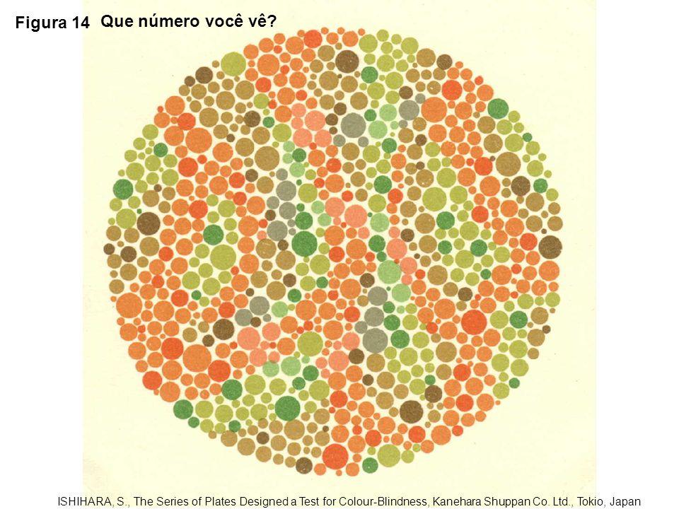 Figura 14 Que número você vê