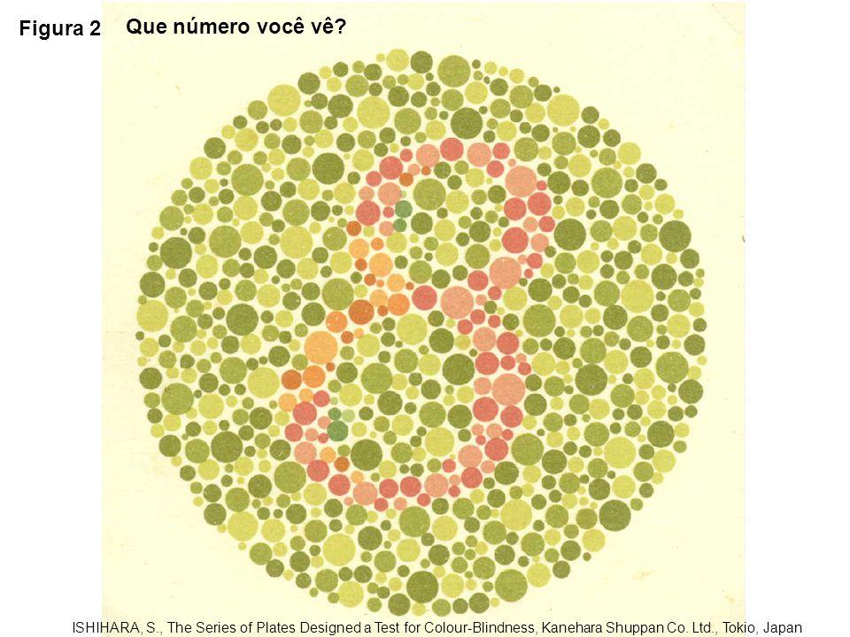 Figura 2 Que número você vê