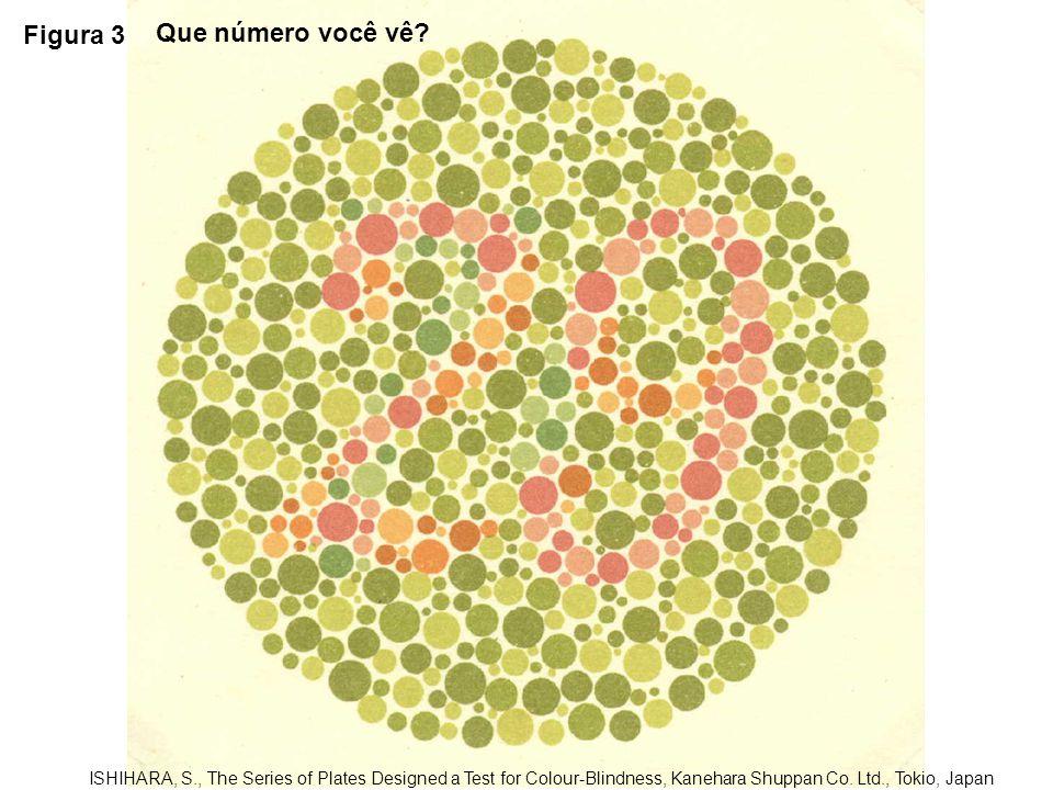 Figura 3 Que número você vê