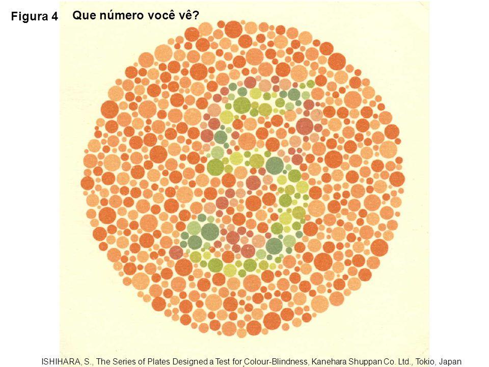 Figura 4 Que número você vê